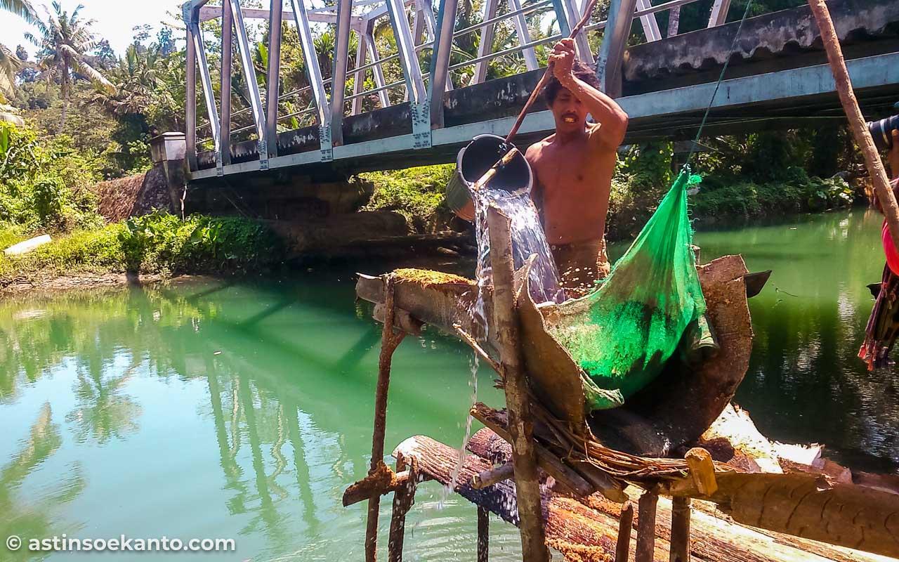 Proses membuat sagu di Sungai Salawai