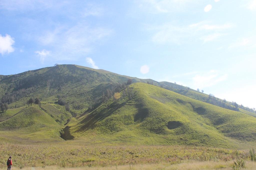 Bukit Teletabies