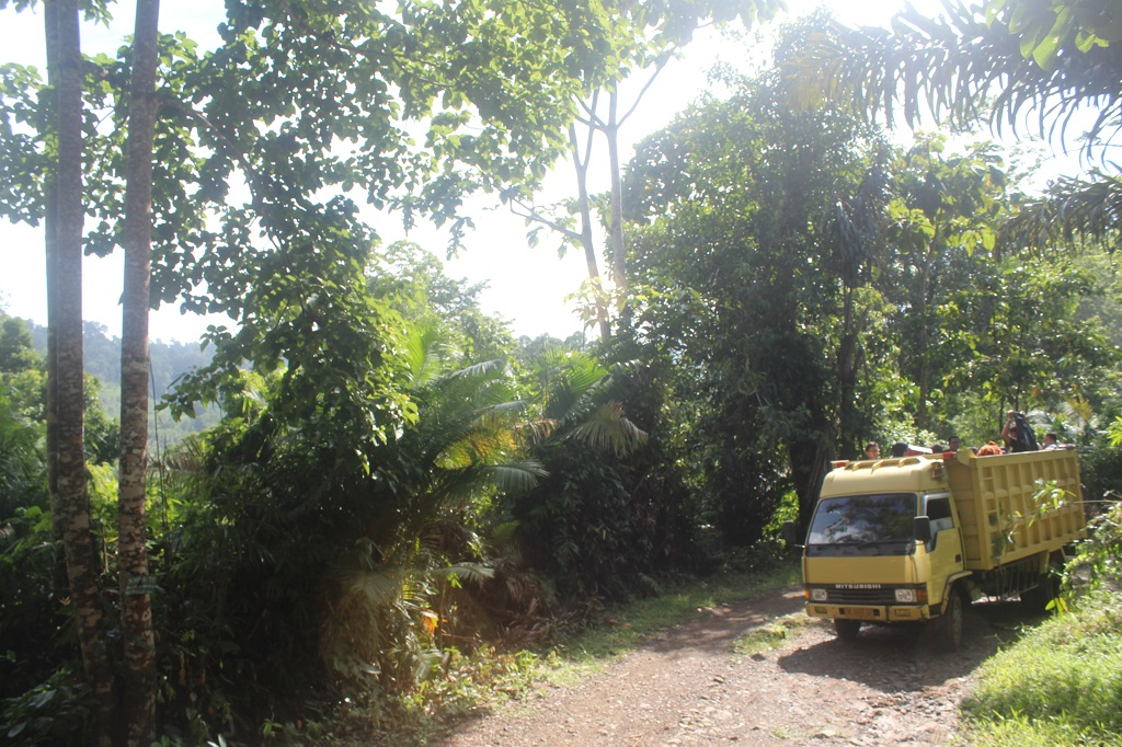 Hutan Tropis Taman Nasional Meru Betiri Banyuwangi