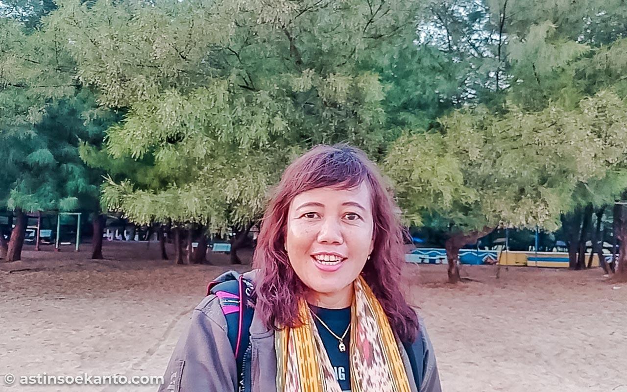 Pohon Cemara Udang di Pantai Lombang