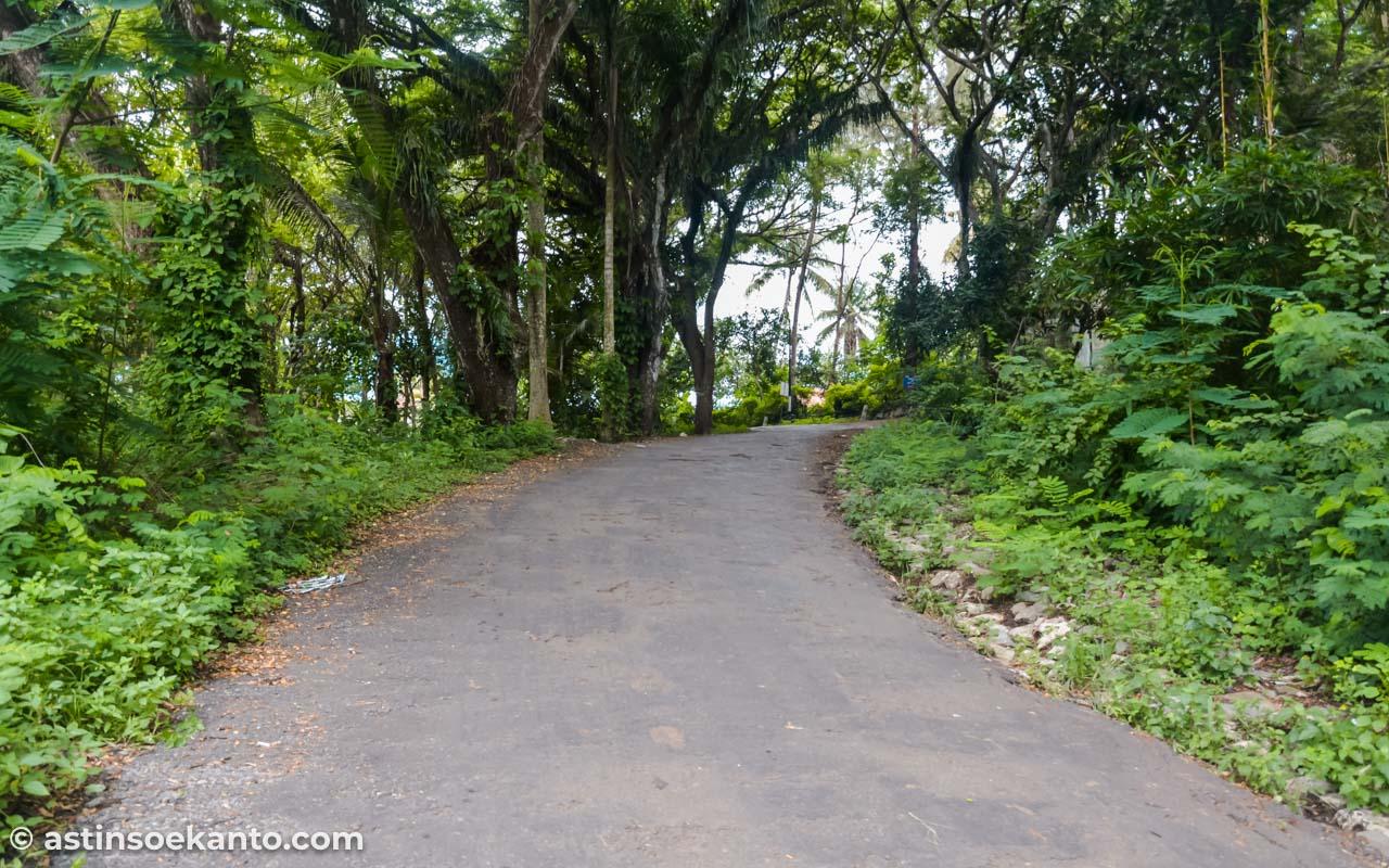 Dari PAntai Popoh ke Retjo Sewu kudu melewati jalan ini. Sekitar 15-20 menit