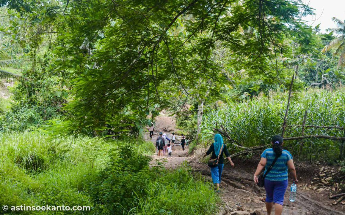 Jalan setapak alami bukan aspal, jalan yang harus dilewati menuju Pantai Coro