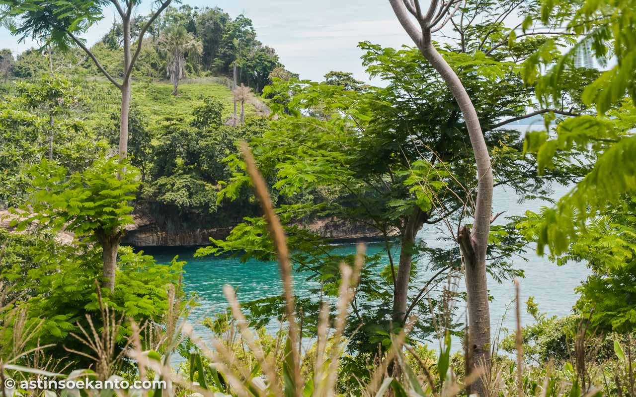 Keindahan Pantai Coro tersembuni di balik pepohonan