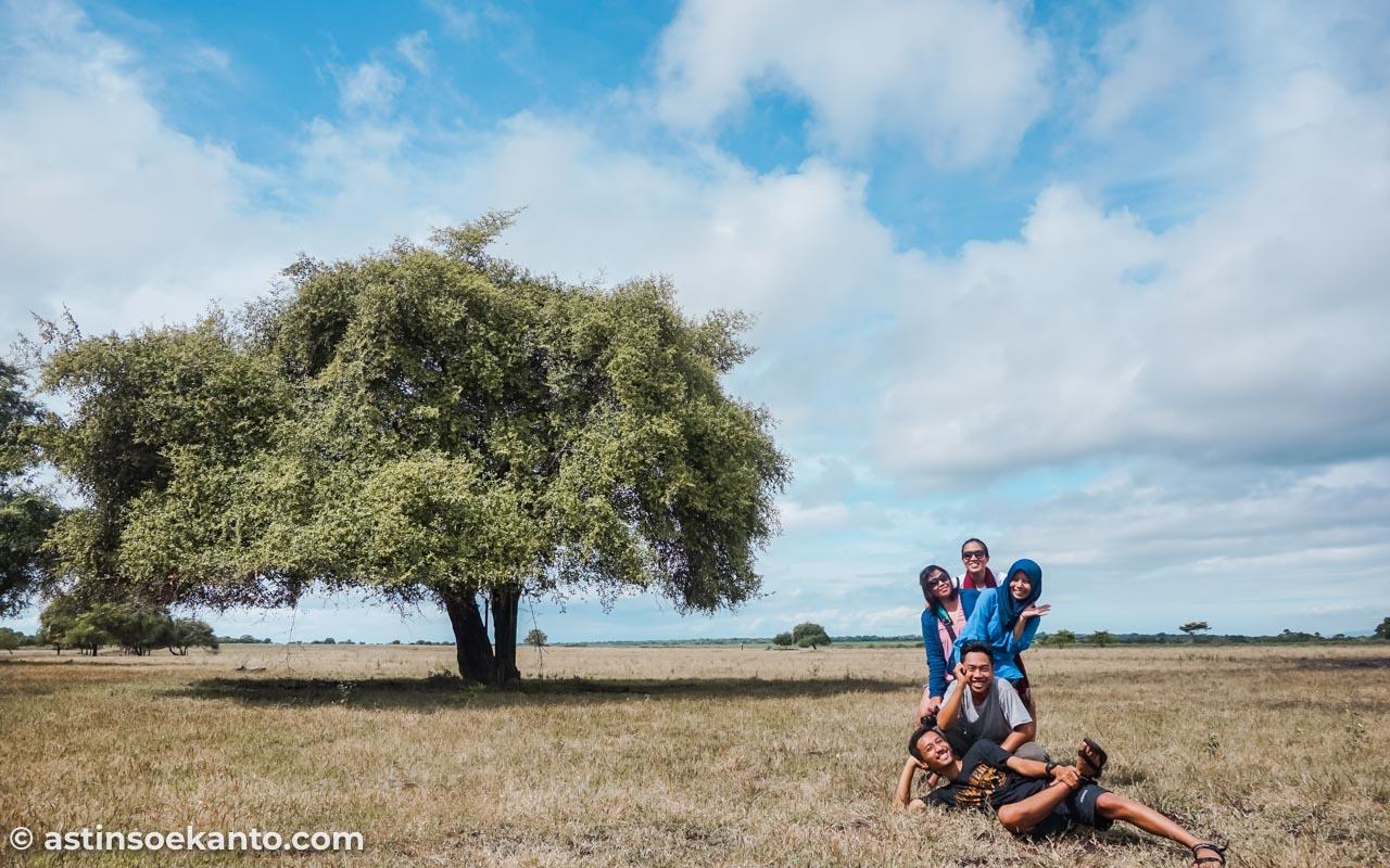 Pose di depan Pohon Bidara Bukol di area Baluran itu kudu berani rebutan. Yang antri banyak soalnya.